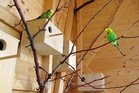 Holzbauten für Freizeit und Haustiere